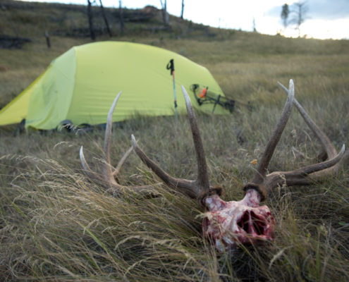 archery, diy, elk, film, hunting, missouri breaks, montana, public land, rmef, sitka gear, the outlier film, friendship, success, adventure