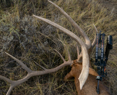 archery, diy, elk, film, hunting, montana wild, missouri breaks, montana, public land, rmef, sitka gear, the outlier film, bear archery, bow