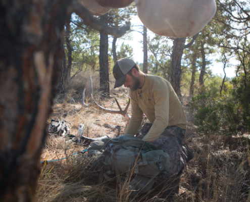 the outlier film, elk, hunting, archery, montana, public land, diy, missouri breaks, film, sitka gear, rmef
